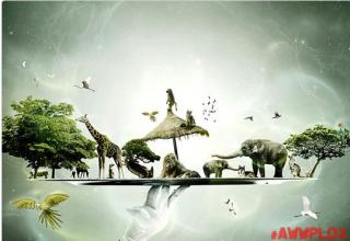 2 pictures of animal planet art