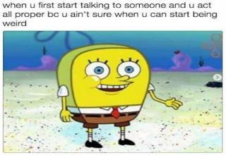 27 memes! I'M READY! I'M READY!