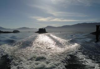 Went on a boat ride yesterday and it was awesome, unusual weather for my neck of the woods
