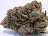I am sure glad I have my Medical Marijuana Card