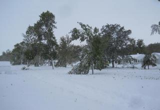 South Dakota was pummeled by an early blizzard, leaving many residents without power and heat for three days. Up to 43 inches of snow in some places.
