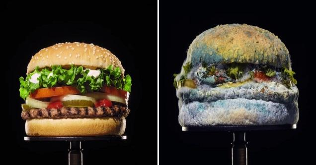 Burger King's new whopper is made preservative free as seen in this new bizarre ad.