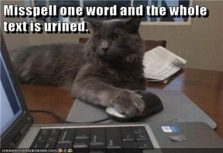 Cat typing misspelling punny