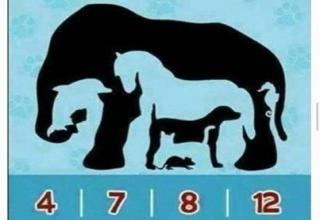 can u solve these