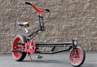 Photos of unusual and rare bikes.