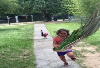 Photoshop battles have become my new favorite social media trend and this one is by far the most hilarious...