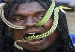 Photo Gallery of Weird People Eating Snakes Like Snacks