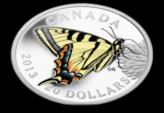 A gallery of Canada's minted coins, old and new.