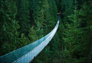 bridges are immense and beautiful works of architecture that defy gravity