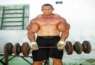 Synthol Shoulders