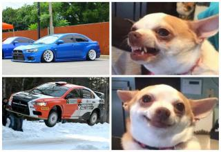 25 Car Memes So Hot They Smell Of Burning Rubber - Funny