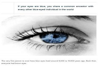 25 Interesting Facts About The eye - Gallery | eBaum's World