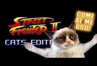 Street Fighter II ( SNES ) Ryu's Stage - Video | eBaum's World